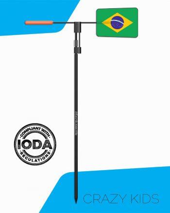 CK_brazil-CODE